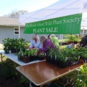 2016 Early Plant Sale