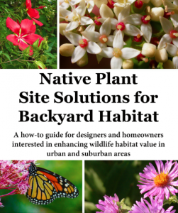 Native Plant Site Solutions for Backyard Habitat