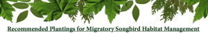 Recommended planting for Migratory Songbird Management