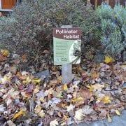 Xerces Society: Pollinator Habitat