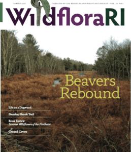 COVER OF WILDFLORARI SPRING 2021
