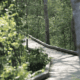 image of the boardwalk at Dundery Brook Trail