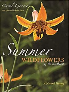 picture of the cover of the book Summer Wildflowers of the Northeast